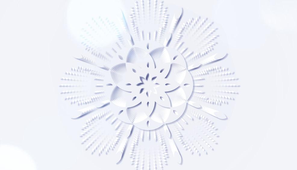 Img9 | Dior Noël project